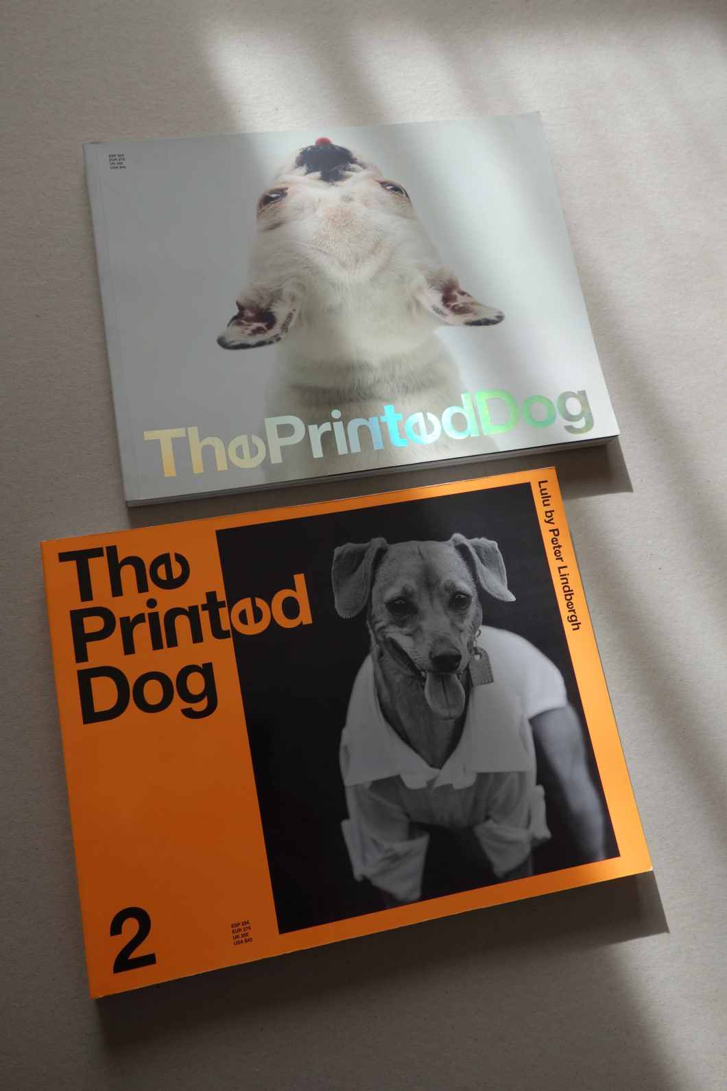 THE PRINTED DOG_.jpg